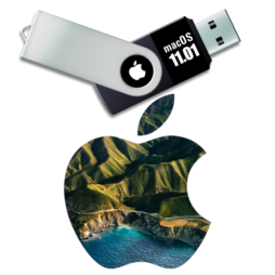 macOS 11.01 Big Sur USB installer disk